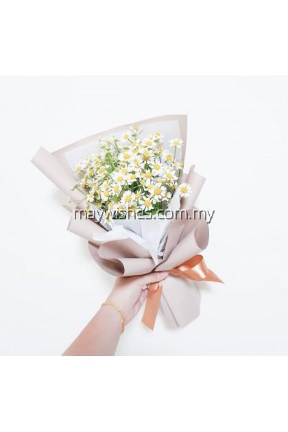 Chamomile Bouquet 02